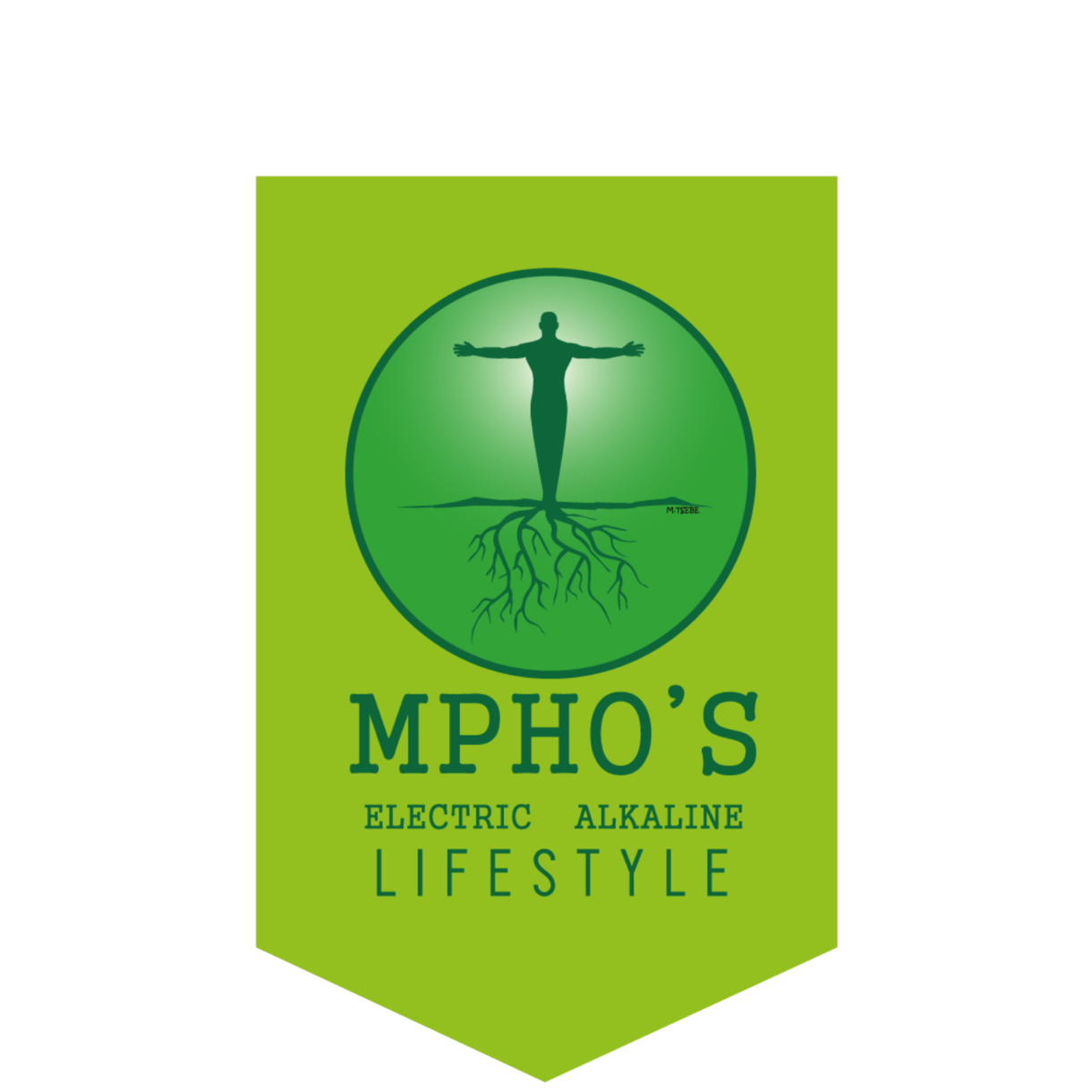 Mpho's Electric Alkaline Lifestyle